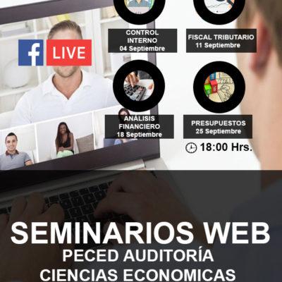 Seminarios WEB Peced Auditoría